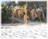 Immobilien und Beach Front Grundstücke in Puerto Vallarta